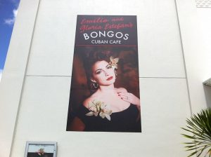 Large Outdoor Building Banner