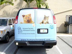 back of van with printed window graphics